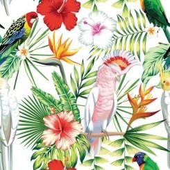 Servett papegoja