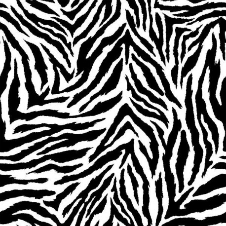 Servett zebra